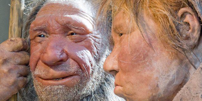 """Gerek, yapılan araştırmalar sonucu elde edilen bulgular olsun gerekse de yapılan deney ve gözlemler sonucu olsun insan türünün milyonlarca yılı bulan bir evrim sürecini yaşadığı kanıtlanmış durumda. Yeryüzünde yaşamın gelişiminin biyolojik aşaması Hoimar Von Ditfruth'un kaleme aldığı """"Dinazorların Sessiz Gecesi"""" adlı eseri ile anlatılırken, kendisinden önceki türlere göre kıyaslandığında insan türünü temsil eden Sapiens'in yaşamsal rekabeti yaşadığı Neandertal'ler ile ölümüne rekabeti de Yuval Noah Harari'nin """"Sapiens"""" adlı eserinde anlatılır."""