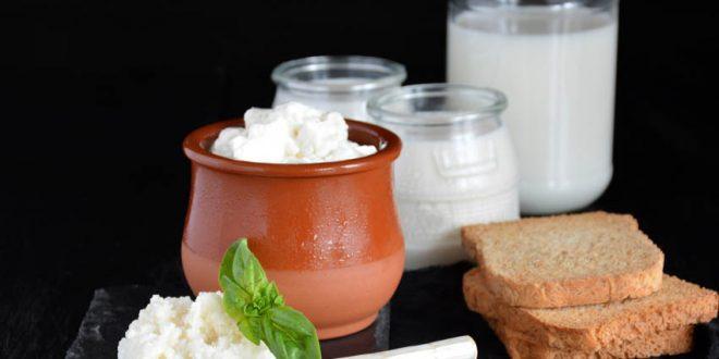 Orta Asyalı bir probiyotik içecek. Binlerce yıldır bağışıklık sistemimizi kuvvetlendirmek için var. Yoğurda benzer bir yapısı olsa da farklı türden probiyotikler içerir. Süt fermantasyonun içilebilir boyutta keyifli halidir. Bunun da evde yapılması önemli. Kefir danesi olarak da toz kefir mayası olarak da piyasada ulaşılabilir.