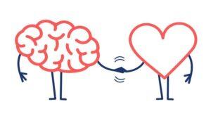 Empatinin oluşması için gerekli olan üç temel kural vardır. Kendini diğer kişinin yerine koyan, olaylara kendi bakış açısıyla bakan, karşısındaki kişinin duygu ve düşüncelerini doğru anlayan ve o kişiyi anladığını gösteren kişidir. Peki, herkes empati kurabilir mi? Ya da böyle sormama izin verin. Herkesin empati kurma yeteneği var mı? Aslında evet! Herkes az ya da çok empati yeteneğine sahiptir. Bu becerinin ne kadar kullanıldığı değişir. Bebekler üzerine yapılan araştırmalar da bu önermenin doğru olduğunu kanıtlıyor.