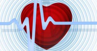Koroner arter hastalığı, kalp krizinin en yaygın nedenidir. Kalbe kan akışından sorumlu olan arter duvarlarında yağ ve kolesterol gibi maddeler birikerek plak denilen yapılar oluşturur. İşlem sırasında plaklar büyür ve damarı daraltır. Daralmış arter, kalp kasına kan akışının azalmasına neden olur. Plaklardan biri çatlarsa, arteri tıkayarak kalp krizine neden olabilecek bir kan pıhtısı oluşacaktır. Kalp krizinin daha az yaygın nedenlerinden biri, bir veya daha fazla koroner arterin yırtıldığı bir durum olan spontan koroner arter diseksiyonudur.